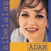 Adam Songs