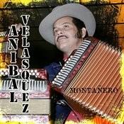 Te VI Paloma Song