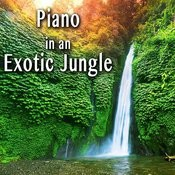 Piano In An Exotic Jungle Songs