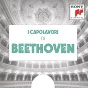 Concerto For Violin And Orchestra In D Major, Op. 61: I Capolavori Di Beethoven Songs