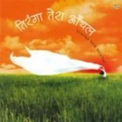 Kesar Ki Rangat Song