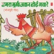 Hamra Murga Jawan Hoi Gawa Re Songs