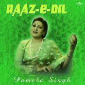 Raaz- E- Dil Songs