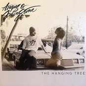 The Hanging Tree(Angus & Julia Stone Cover) Song