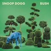I'm Ya Dogg Song