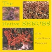 The Native Shrubs Of The Santa Monica Mountains Songs