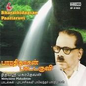 Bharathidaasan Paattaruvi Songs