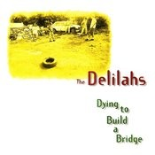Dying to Build a Bridge Songs