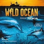 Wild Ocean - The Original Film Soundtrack Songs