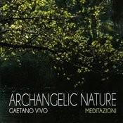 Albero Della Luce - Arcangelo Metatron (Strumentale) Song