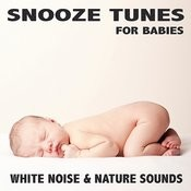 White Noise & Nature Sounds Songs