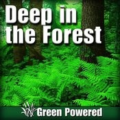 Deep In The Forest (Nature Sound) Songs