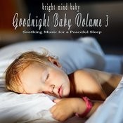 Goodnight Baby: Soothing Music For A Peaceful Sleep (Bright Mind Kids), Vol. 3 Songs