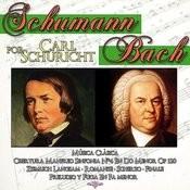 Schumann & Bach Por Frederick Stock. Música Clásica Songs