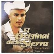 Homenaje Al Grande Songs
