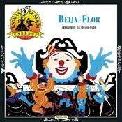 Escolas De Samba - Enredos - Beija Flor De Nilópolis Songs