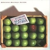 Beatles Alaturka Songs