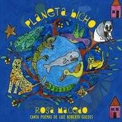 Planeta Bicho Songs