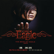 The Best Of Eagle 2003 Songs