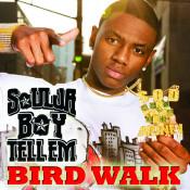 Bird Walk Songs
