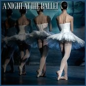 The Nutcracker Suite: Dance Of The Sugar-Plum Fairy Song
