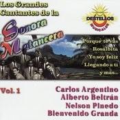 Los Grandes Cantantes de la Sonora Matancera Vol. 1 Songs