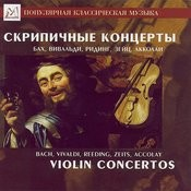 Violin Concerto In B Minor, Op. 35: Andante Song