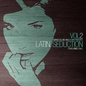 Latin Seduction (Feat. Erika) [Dj Mfr Original] Song