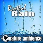 Steady Downpour Of Cleansing Rain For Meditation And Well Being (Nature Sound) Song