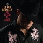 Me Llego El Amor Songs