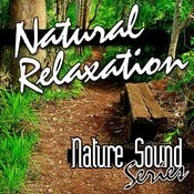 Natural Relaxation (Nature Sounds) Songs