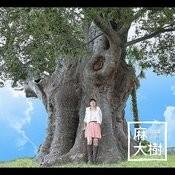 Daiki Song
