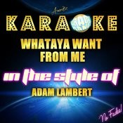 Whataya Want From Me (In The Style Of Adam Lambert) [Karaoke Version] - Single Songs