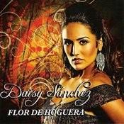 Flor De Hoguera Song