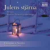 Julens Stjärna - Christmas In Sweden Songs