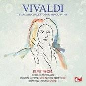 Chamber Concerto In G Minor, Rv 104: VI. Allegro Song