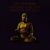 Buddha And The Chocolate Box Songs
