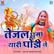 Salim Shekhawas Songs Download: Salim Shekhawas Hit MP3 New