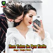 Tu Mera Hai Sanam Song