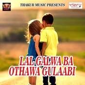 Ho Ja Sabhe Shabhe Shakahaar Song