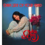 Zhen Jin Dian - Chelsia Chan Songs
