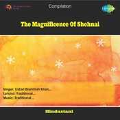 The Magnificence Of Shehnai Songs