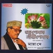 Bandhu Pelam Sathi Pelam Songs