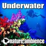 Strong Under Water Bubble Background Song