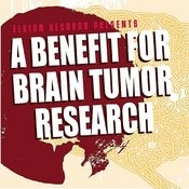 Elkion Presents A Benefit For Brain Tumor Research Songs