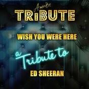 Wish You Were Here (A Tribute To Ed Sheeran) Songs