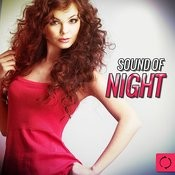 Sound Of Night Songs
