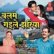 Balam Gaile Jhariya Songs