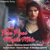 Tera Pyar Mujhe Mila Song
