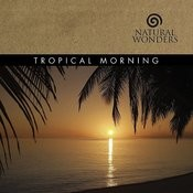 Tropical Morning Songs